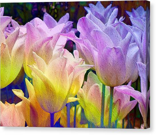 Totally Tulips Two Canvas Print