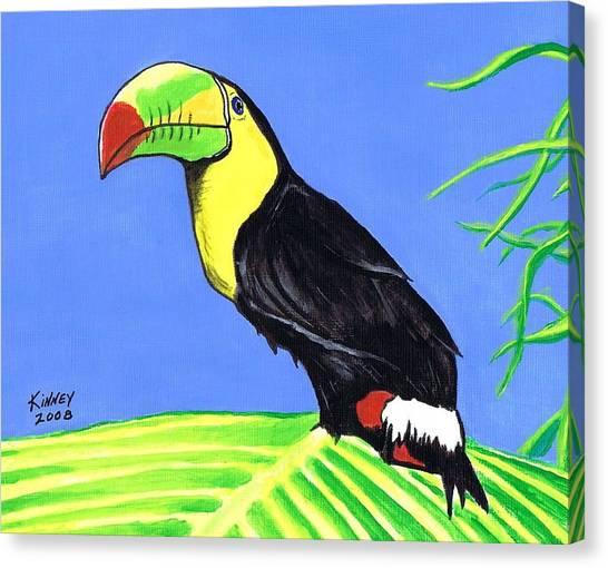 Toucan Bird Canvas Print by Jay Kinney