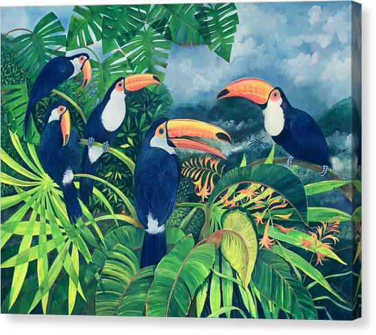 Perching Birds Canvas Print - Toucan Talk by Lisa Graa Jensen