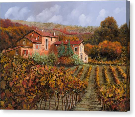 Wine Country Canvas Print - tra le vigne a Montalcino by Guido Borelli