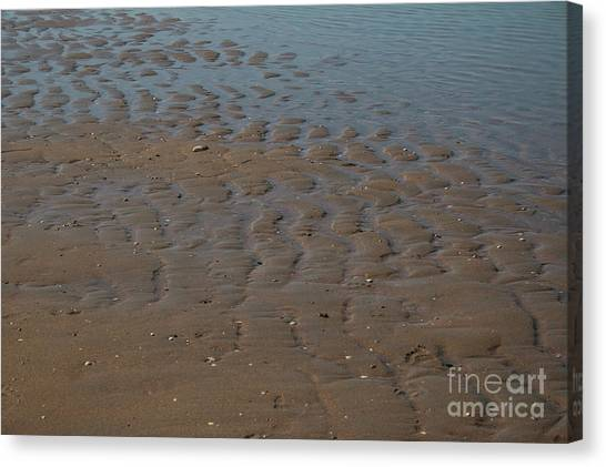 Traces Canvas Print