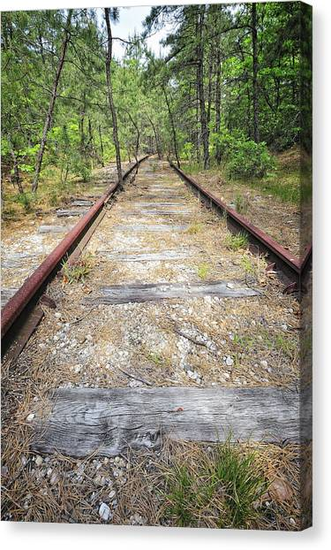 Tracks To Nowhere Canvas Print by Tim Doubrava