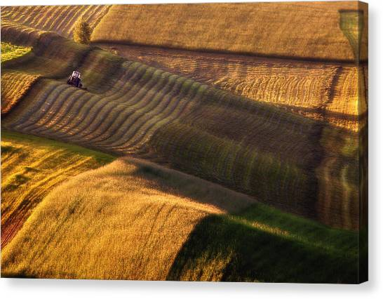 Tractors Canvas Print - Tractor by Fproject - Przemyslaw Kruk
