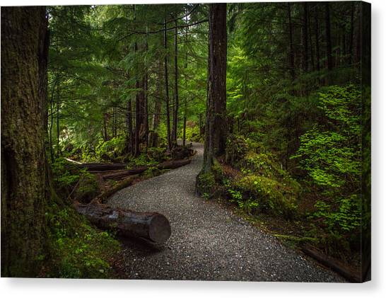 Trail Around Ward Lake Ketchikan Alaska Canvas Print