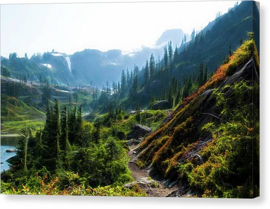 Trail In Mountains Canvas Print