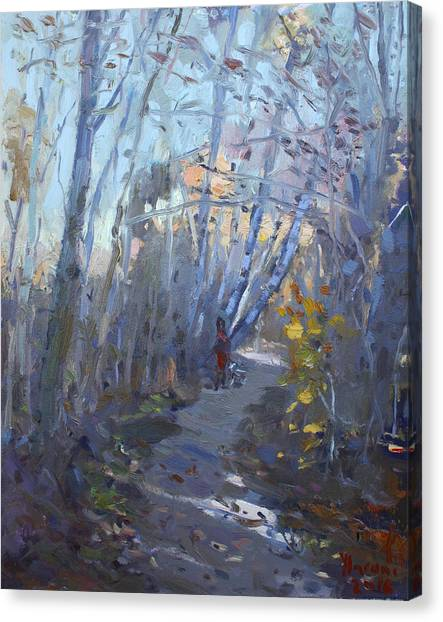 Conservation Canvas Print - Trail In Silver Creek Valley by Ylli Haruni