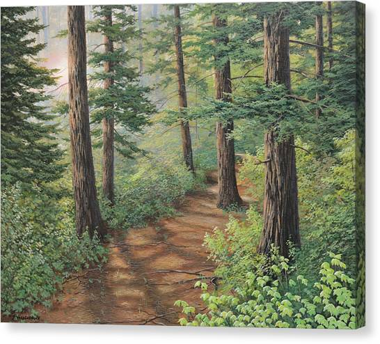 Trail Of Green Canvas Print
