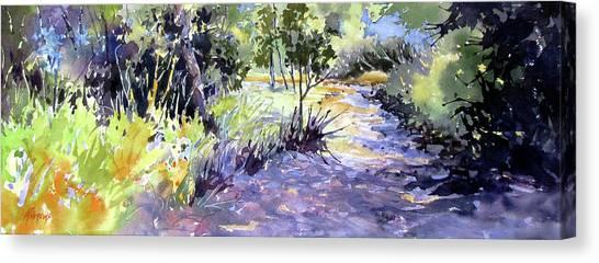 Trail Shadows Canvas Print