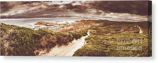 Sandy Canvas Print - Trail To Western Tasmania by Jorgo Photography - Wall Art Gallery
