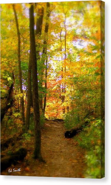 Trailhead Light Canvas Print