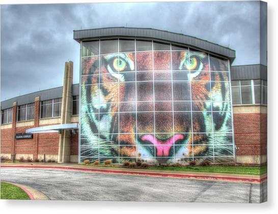 University Of Missouri Canvas Print - Training Tigers by Steve Stuller