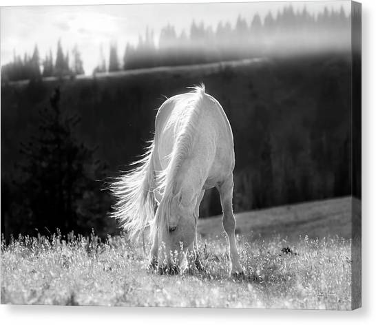 Canvas Print featuring the photograph Tranquil Black And White 3 by Leland D Howard