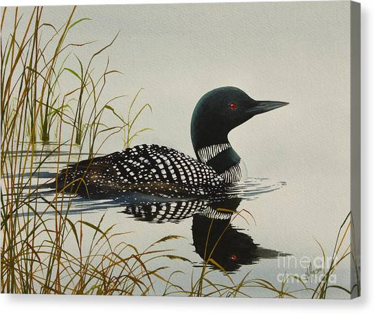 Loons Canvas Print - Tranquil Stillness Of Nature by James Williamson