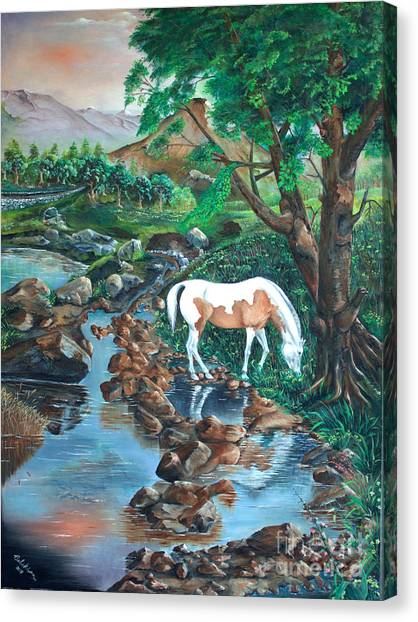 Canvas Print featuring the painting Tranquility by Farzali Babekhan