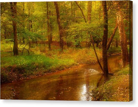 Tranquility Stream - Allaire State Park Canvas Print by Angie Tirado
