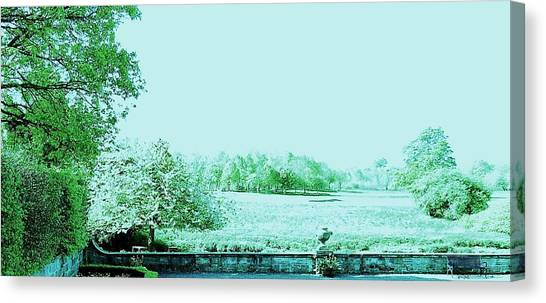 Transience Canvas Print