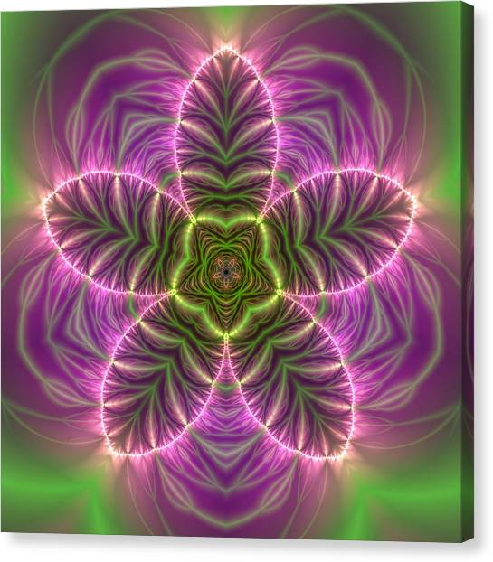 Transition Flower Canvas Print