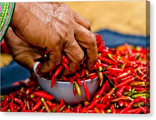 Woman Holding Red Chillies, Can Cau Market, Sapa,vietnam Canvas Print