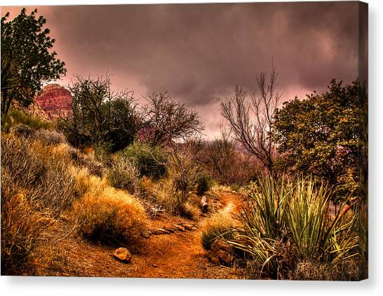 Traveling The Trail At Red Rocks Canyon Canvas Print