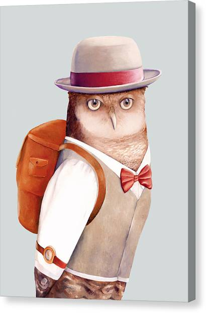 Animals Canvas Print - Travelling Owl by Animal Crew