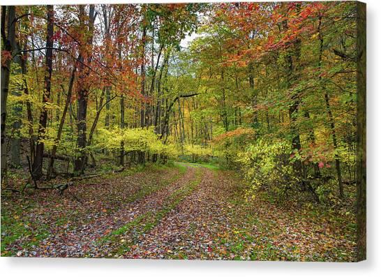 Travels Through Autumn Canvas Print