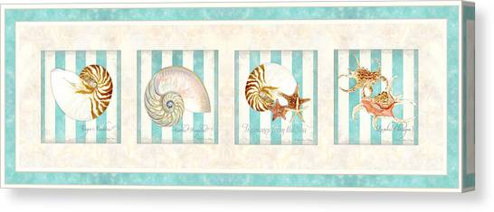 Conch Shells Canvas Print - Treasures From The Sea - Nautilus Shell by Audrey Jeanne Roberts