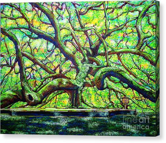 Treaty Oak /part Two/ Canvas Print
