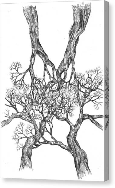 Tree 12 Canvas Print