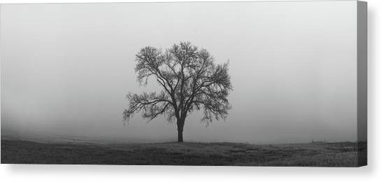 Canvas Print featuring the photograph Tree Alone In The Fog by Todd Aaron