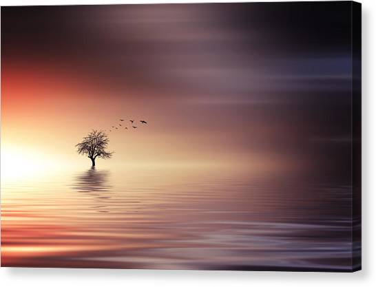 Tree And Birds On Lake Sunset Canvas Print