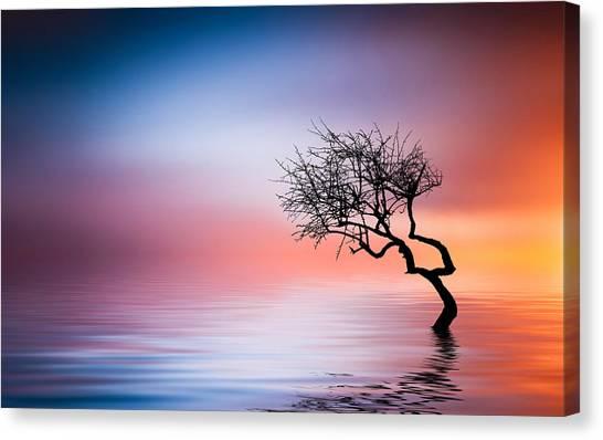 Tree At Lake Canvas Print