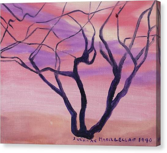 Tree At Sunset Canvas Print by Suzanne  Marie Leclair