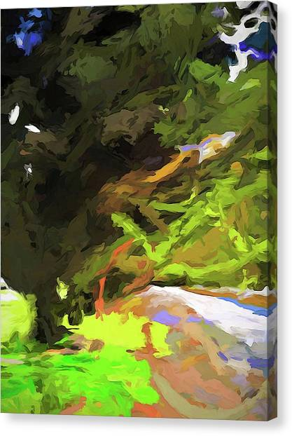 Tree Avenue Canvas Print