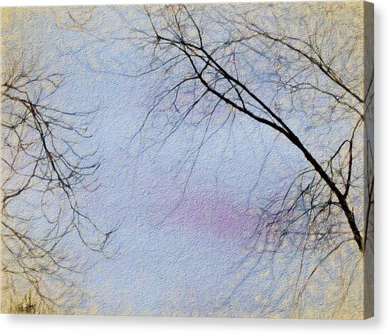 Border Wall Canvas Print - Tree Branches Reaching For The Clouds by Debra Lynch
