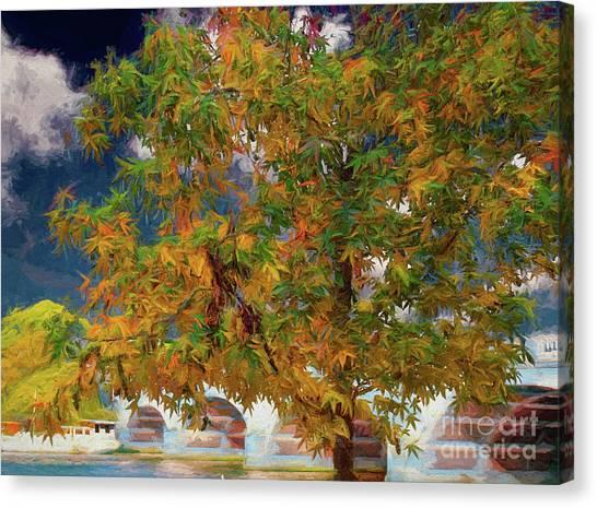 Tree By The Bridge Canvas Print