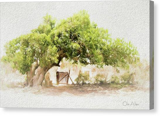 Tree By The Gate Canvas Print