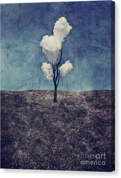 Tree Canvas Print - Tree Clouds 01d2 by Aimelle