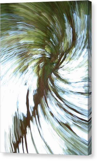 Tree Diptych 1 Canvas Print