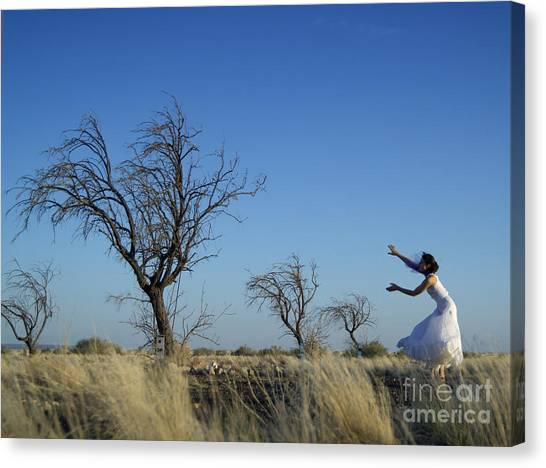 Tree Echo Canvas Print