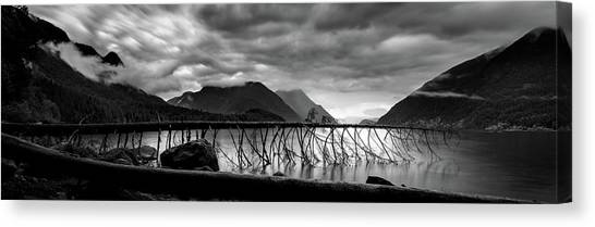 Tree Fall At Alouette Lake Canvas Print