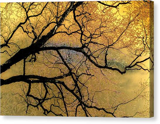 Tree Fantasy 7 Canvas Print