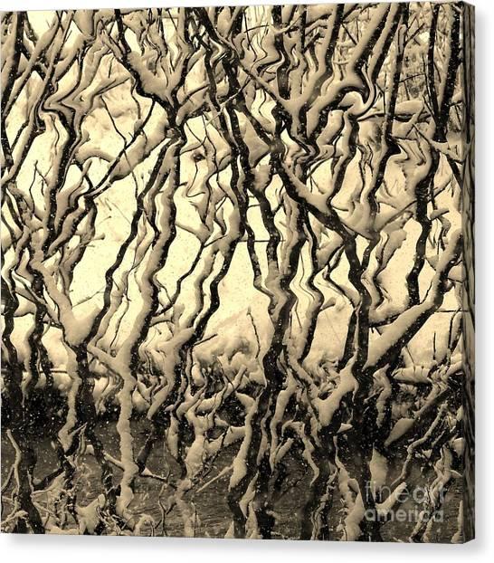 Tree Frenzy Canvas Print