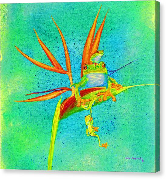 Tree Frog On Birds Of Paradise Square Canvas Print