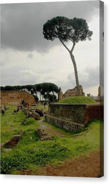 Tree In Ancient Rome Landscape Canvas Print by Joseph Cossolini