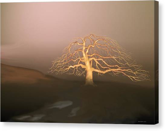Tree In Winter I Canvas Print