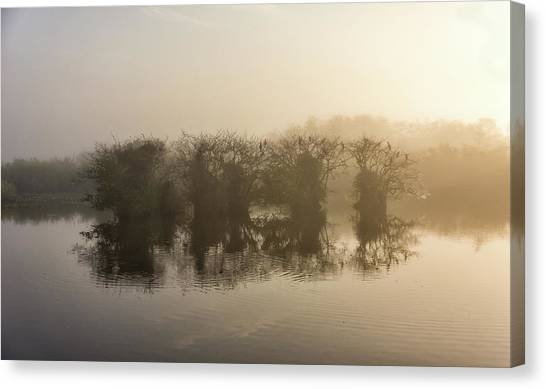 Tree Islands Canvas Print