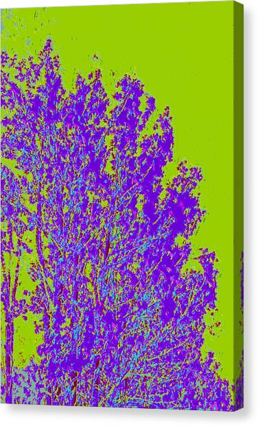 Tree Leaves D4 Canvas Print by Modified Image