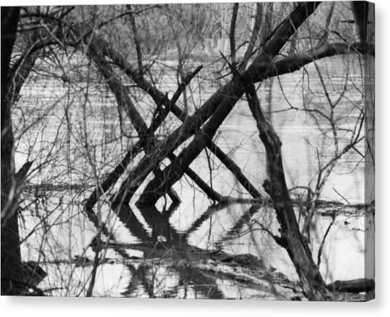 Tree Line Canvas Print by Cynthia Ann Swan