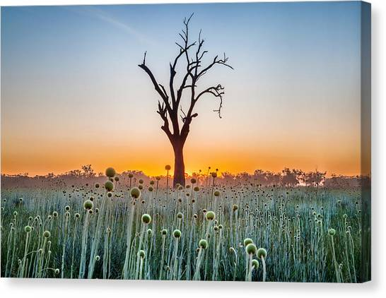 Sunrise Canvas Print - We Are Family by Az Jackson
