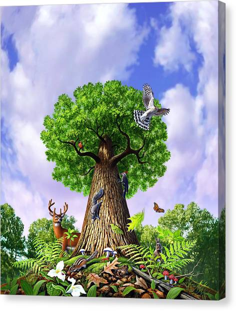 Woodpeckers Canvas Print - Tree Of Life by Jerry LoFaro